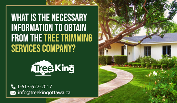 What is the necessary information to obtain from the Tree Trimming Services company?
